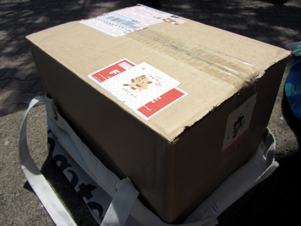 The giant mystery cardboard box containing my birthday present from Saar